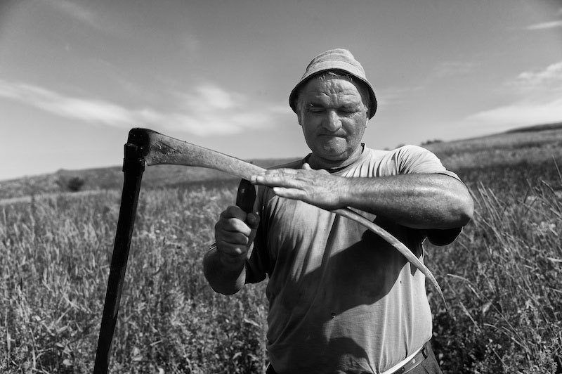 Portrait of a farmer sharpening his scythe